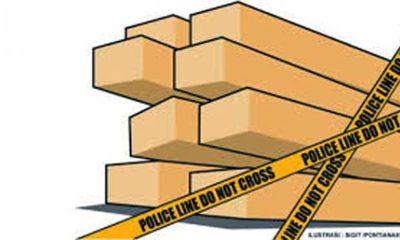 Polres Gresik Akhirnya Tetapkan Suhud Tersangka Pencuri Kayu Milik TKD